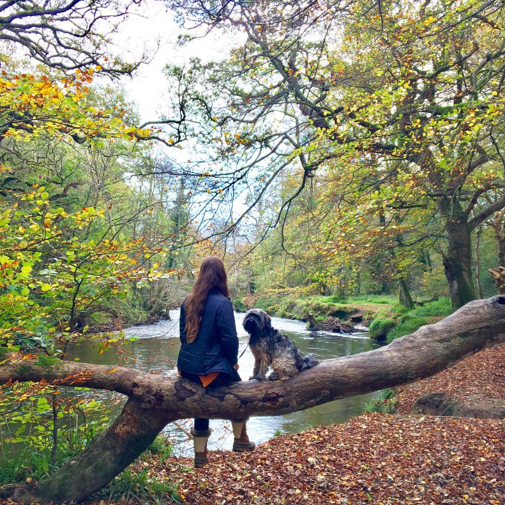 A yoga music playlist for Autumn